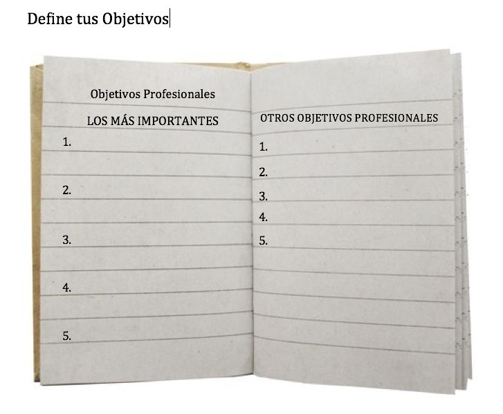 objetivos profesionales