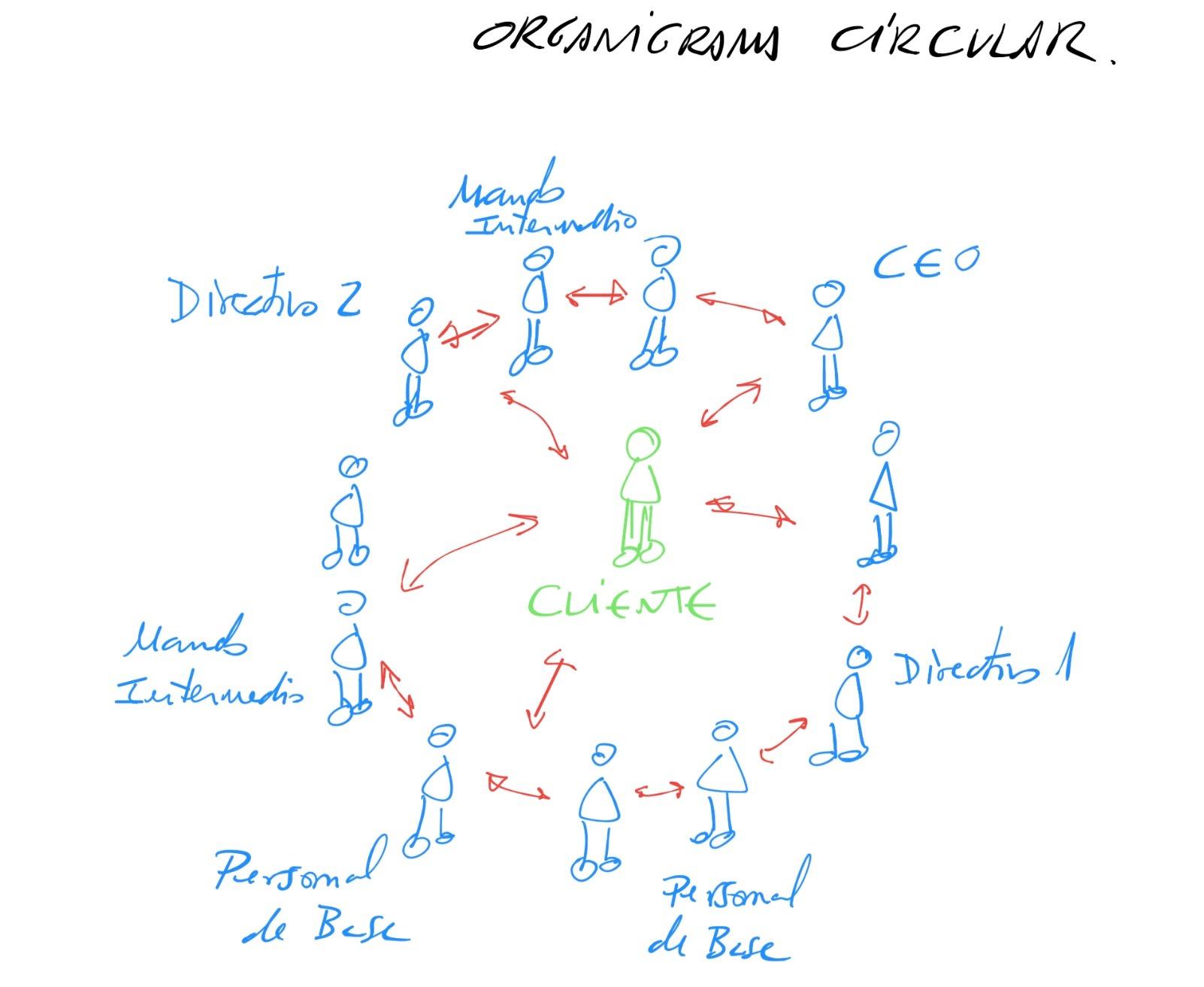 organigrama circular