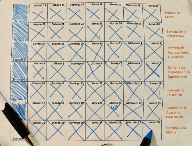 Calendario semanal coronavirus